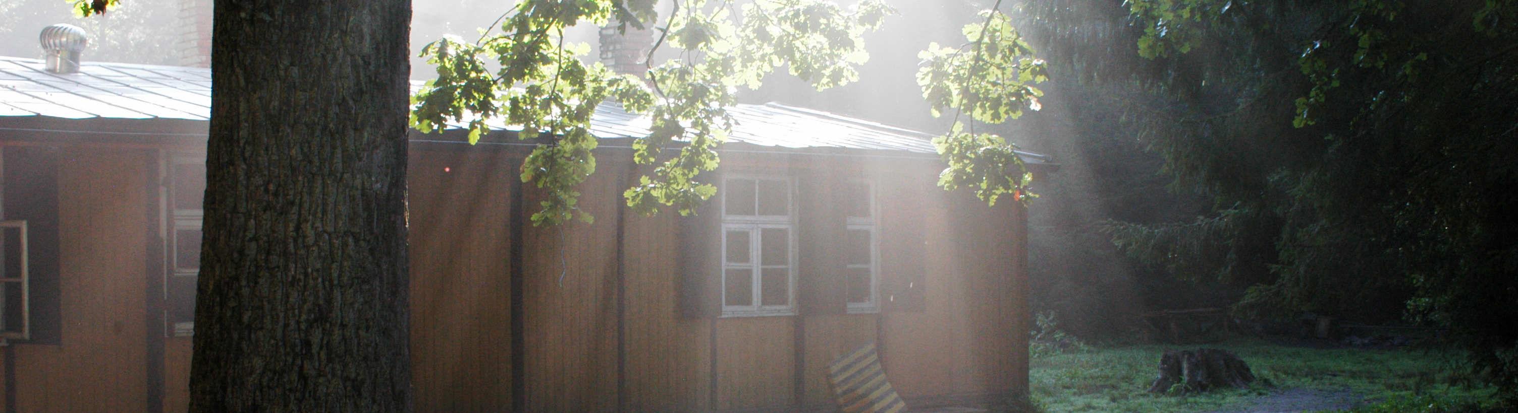 Chata uprostřed lesů